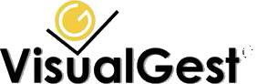 VisualGest - Soluciones software para el comercio y la pyme. Software ERP - TPV - POS